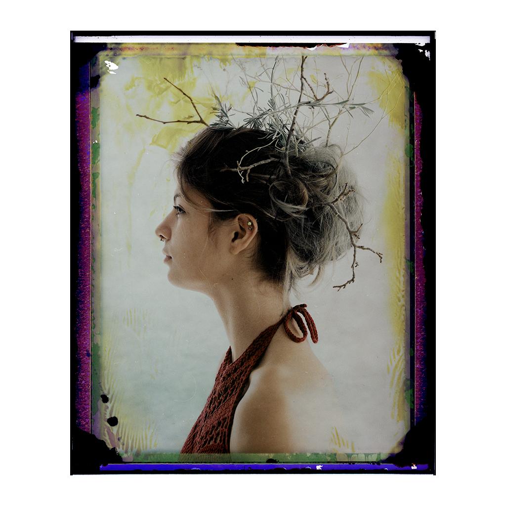 fp 100-c portraits
